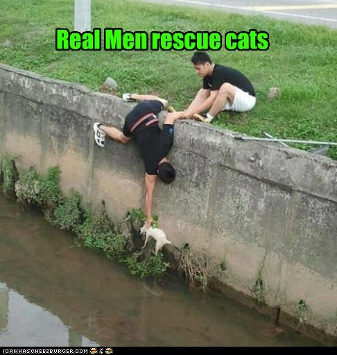 real men,men,rescue,Cats,captions,water,halp,help,categoryimage