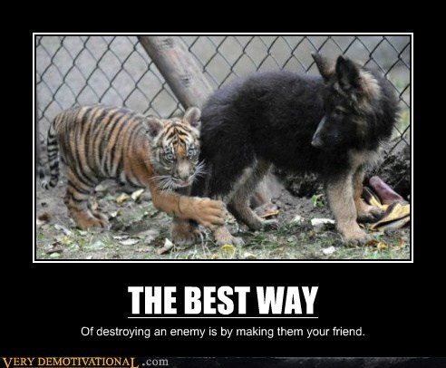 dogs tiger enemy wtf friends - 6645449728