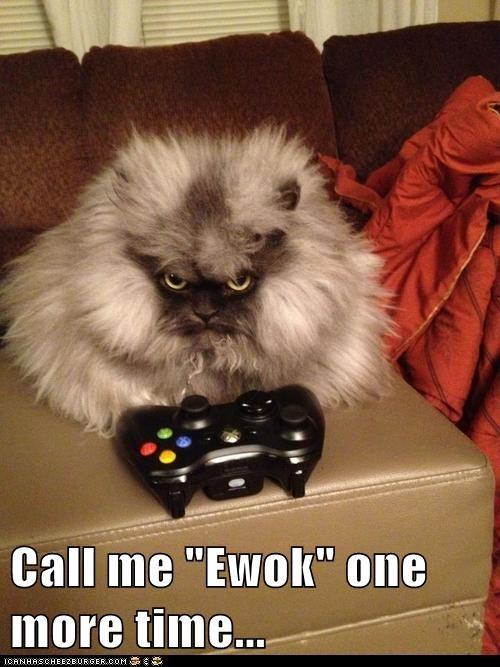 """Call me """"Ewok"""" one more time..."""