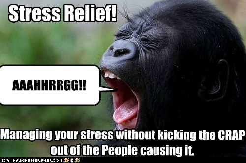 AAAHHRRGG!! Stress Relief! Managing your stress without kicking the CRAP out of the People causing it.