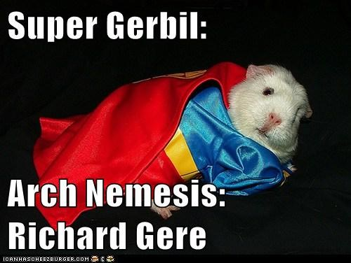 richard gere,gerbil,superhero,wtf
