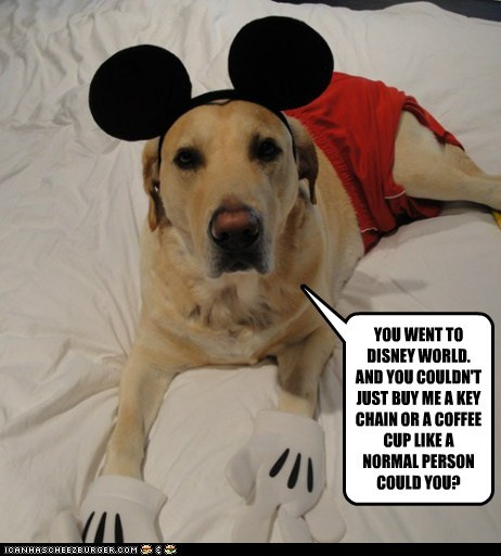 costume dogs labrador mickey mouse disney land souvenir