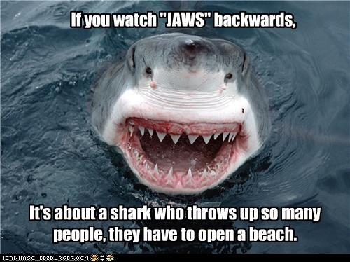 backwards,beach,eating,jaws,Movie,throw up,shark