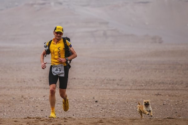 runner adopts stray dog that ran with him during race