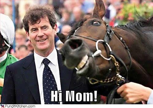 horses photobombing