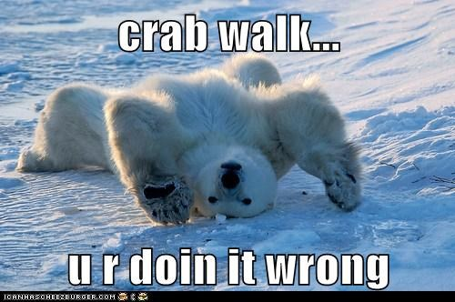 polar bear,crab walk,doing it wrong,ice,back