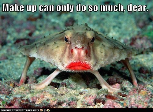 makeup,face,lipstick,crab,ugly