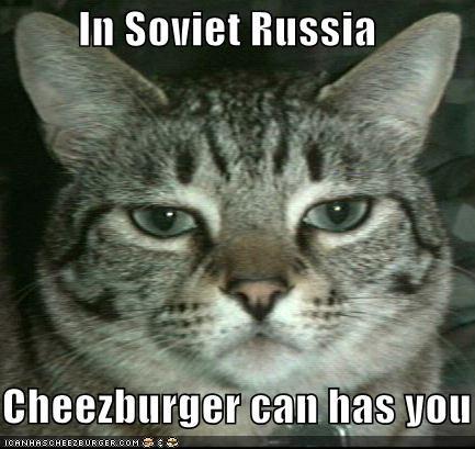 Cheezburger Image 665041152