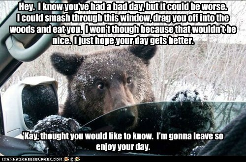 letting you know,car,bear,could be worse,bad day,eat you,friendly