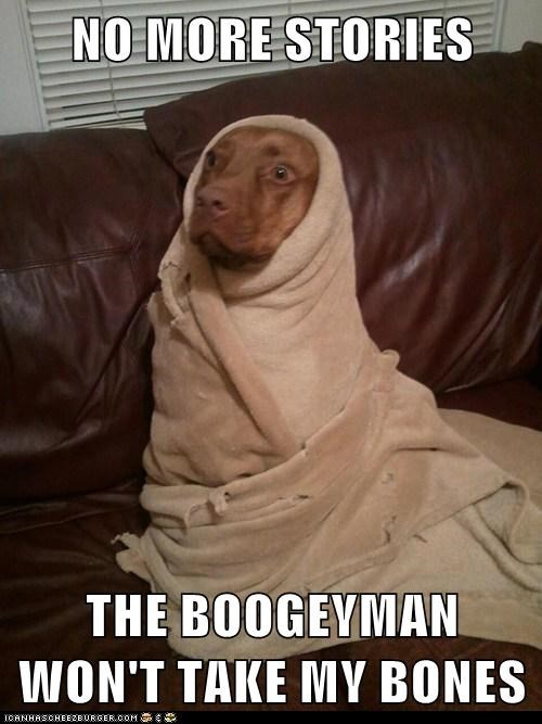 boogeyman,dogs,scary stories,blanket,what breed