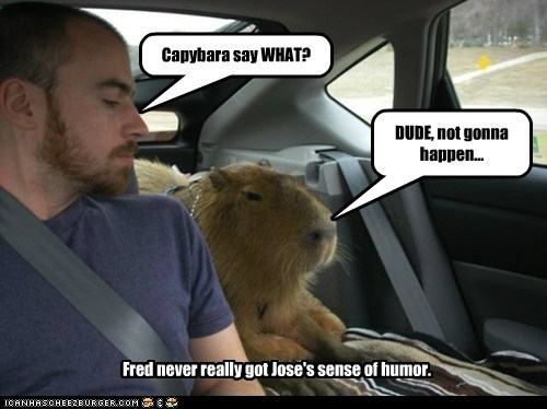 Capybara say WHAT? DUDE, not gonna happen... Fred never really got Jose's sense of humor.