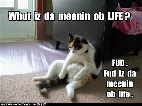 food meaning of life philosopher Cats captions life - 6652108800
