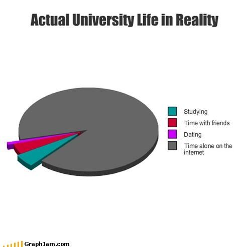 Pie Chart university studying school internet - 6652250624