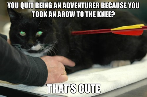 cat,arrow to the knee,IRL,news,Cats,arrows,Memes,Sad,stories,categoryvoting-page