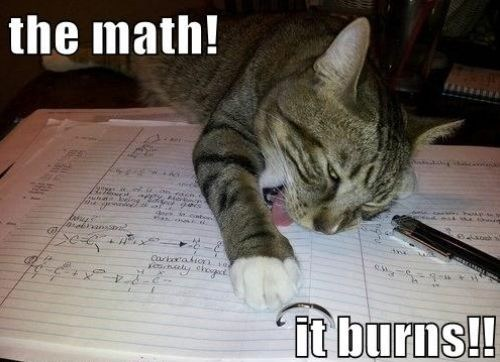 essay,the math,cat,math cat,burns