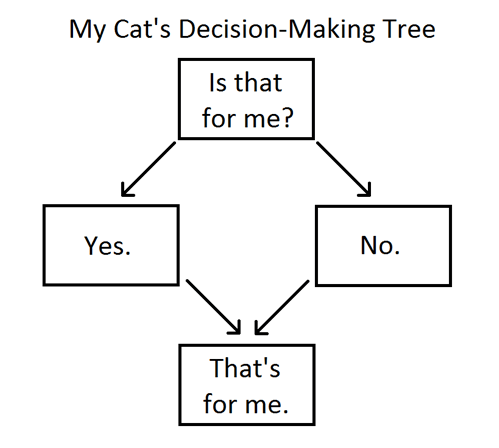 flow charts,decision making,Cats,charts,belongings,mine,annoying,yes,no,categoryimage