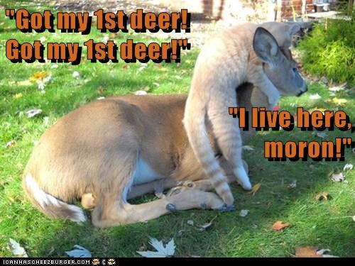 """Got my 1st deer! Got my 1st deer!"" ""I live here, moron!"""