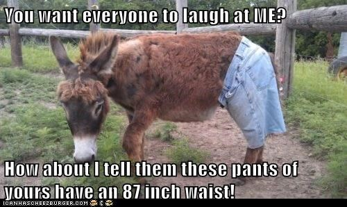 fat,waist,pants,embarrassing,donkey,laugh