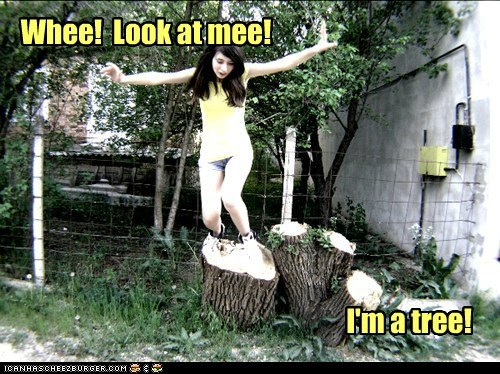 Whee! Look at mee! I'm a tree!