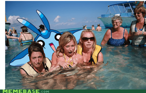mantyke photobomb stingray pokemanz - 6653880576