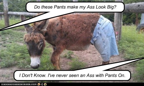 Do these Pants make my Ass Look Big? I Don't Know. I've never seen an Ass with Pants On.