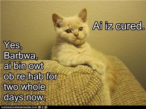 Cheezburger Image 6655966208