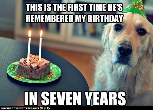 dogs,Sad,birthdays,captions,dog years,forgot,remembering