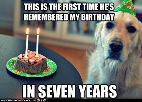 dogs Sad birthdays captions dog years forgot remembering - 6656354816