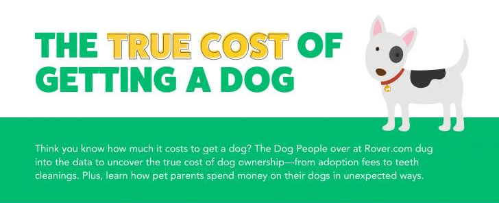 owning costs dogs dog owner infographics - 6656773