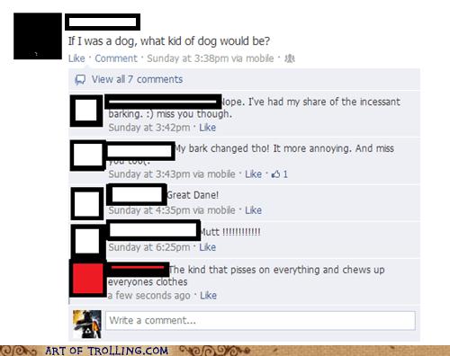 dogs facebook girls
