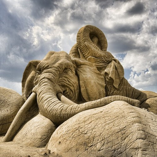 sand sculpture elephant beach art sculpture - 6657400320