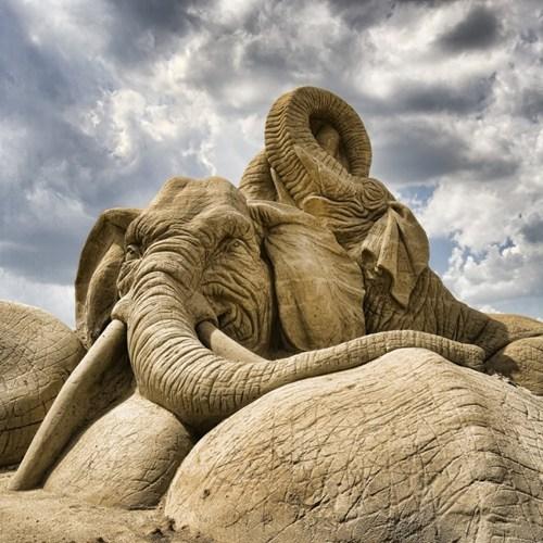 sand sculpture elephant beach art sculpture - 6657400320