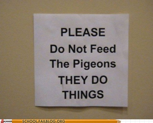cruel unimaginable pigeons warning they do things - 6657755136