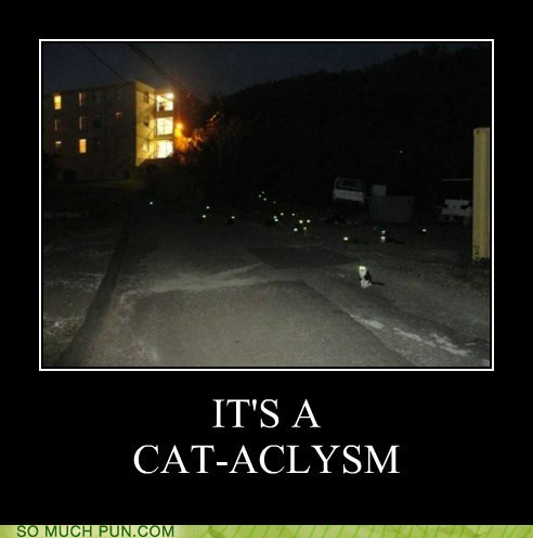 cataclysm,prefix,cat,literalism,double meaning