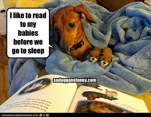 I like to read to my babies before we go to sleep sodoggonefunny.com