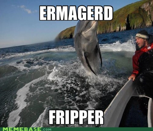 Derp meme of a dolphin jumping out of the water alongside a boat.