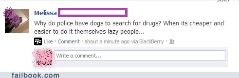 drug dogs drug sniffing dogs police dogs k9 k9 unit - 6659996160