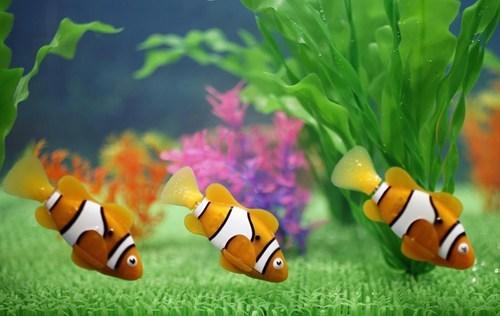 fish,robotic,fake,pets,robots