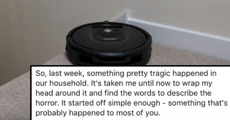 roomba smears dog's poop all over the floor