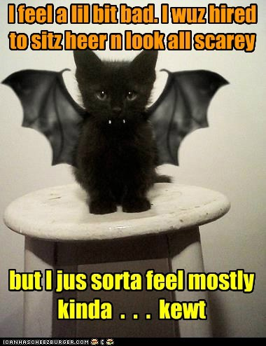 I feel a lil bit bad. I wuz hired to sitz heer n look all scarey but I jus sorta feel mostly kinda . . . kewt