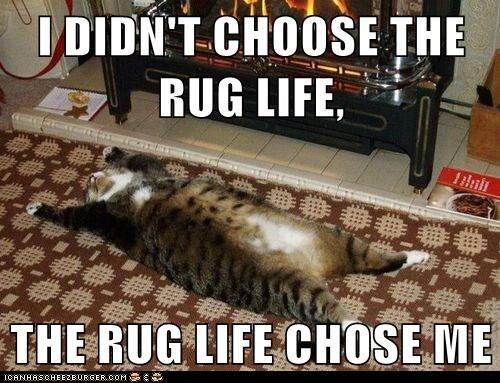 I DIDN'T CHOOSE THE RUG LIFE, THE RUG