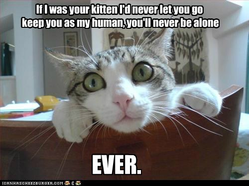 overly attached cat,girlfriend,justin bieber,reference,love,Cats,captions,creepy