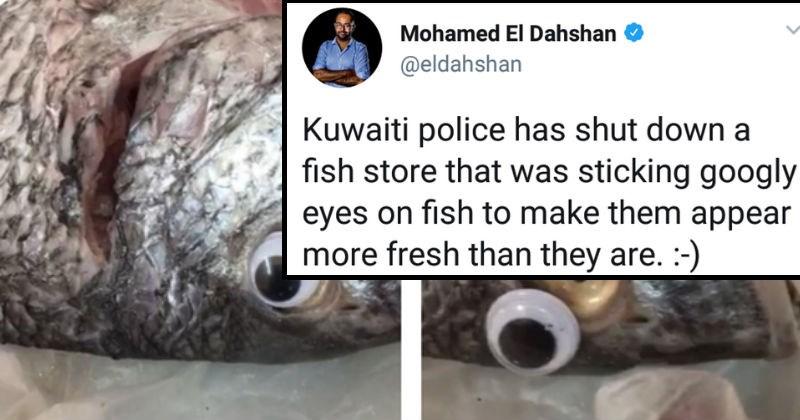snapchat failure twitter panda language attempt coffee dumb fish coloring prison funny - 6661381