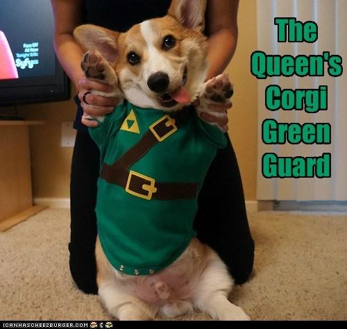 The Queen's Corgi Green Guard