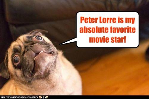 Peter Lorre is my absolute favorite movie star!