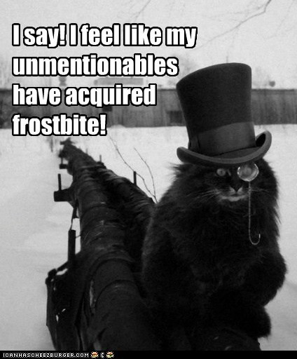 oh you fancy top hat monacle Cats captions frostbite cold winter