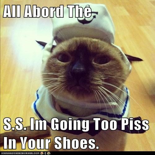 Cats,captions,piss,pee,shoes,costume,outfit