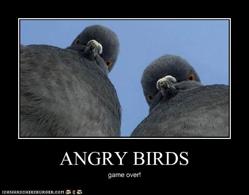 angry birds pigeons lost game over - 6661935104