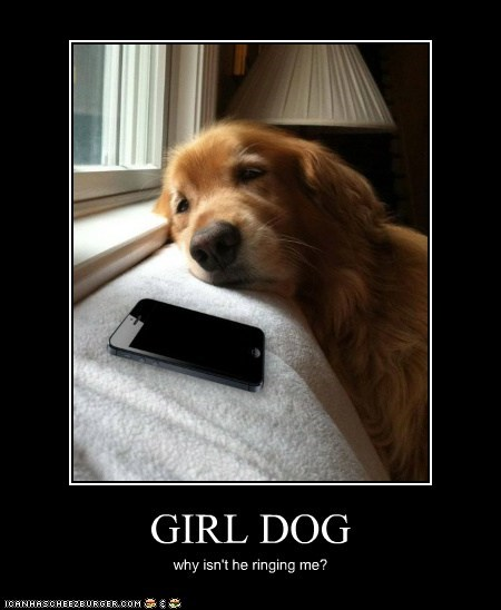 GIRL DOG why isn't he ringing me?