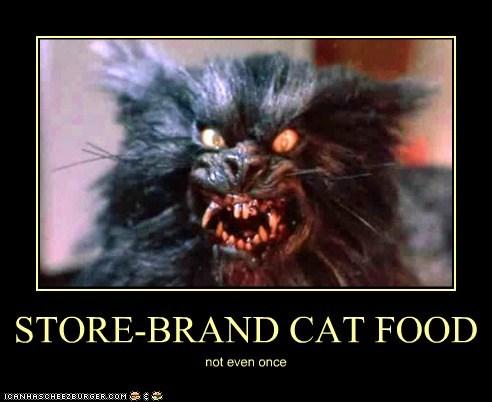 STORE-BRAND CAT FOOD